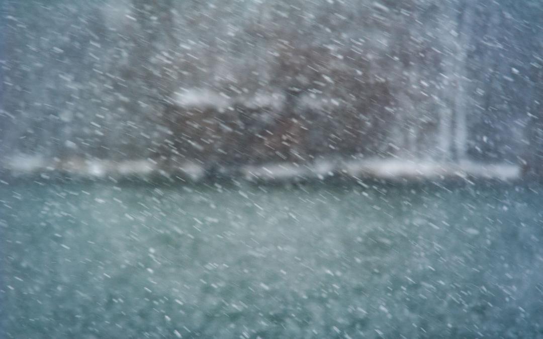Naturfotografie bei schlechtem Winterwetter – eine schwarzweiße Reise mit Farben