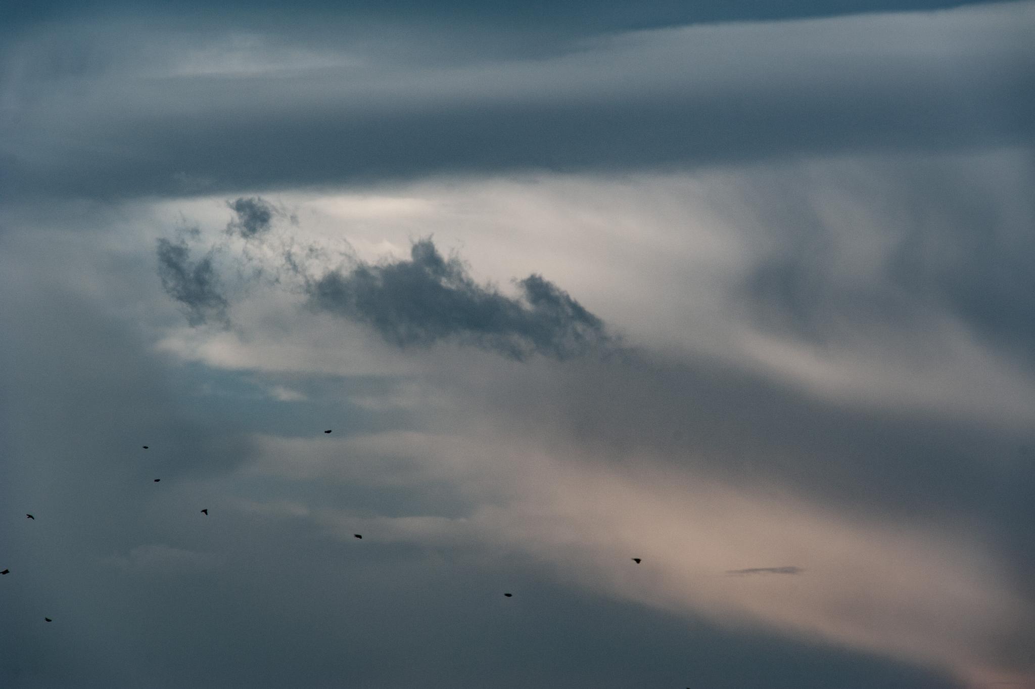 wolken sooß (43)