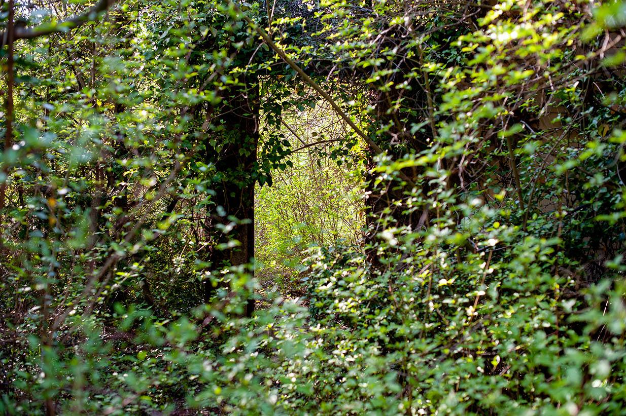 Lost Places Niederösterreich